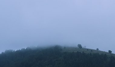 Niebla. Colina verde.