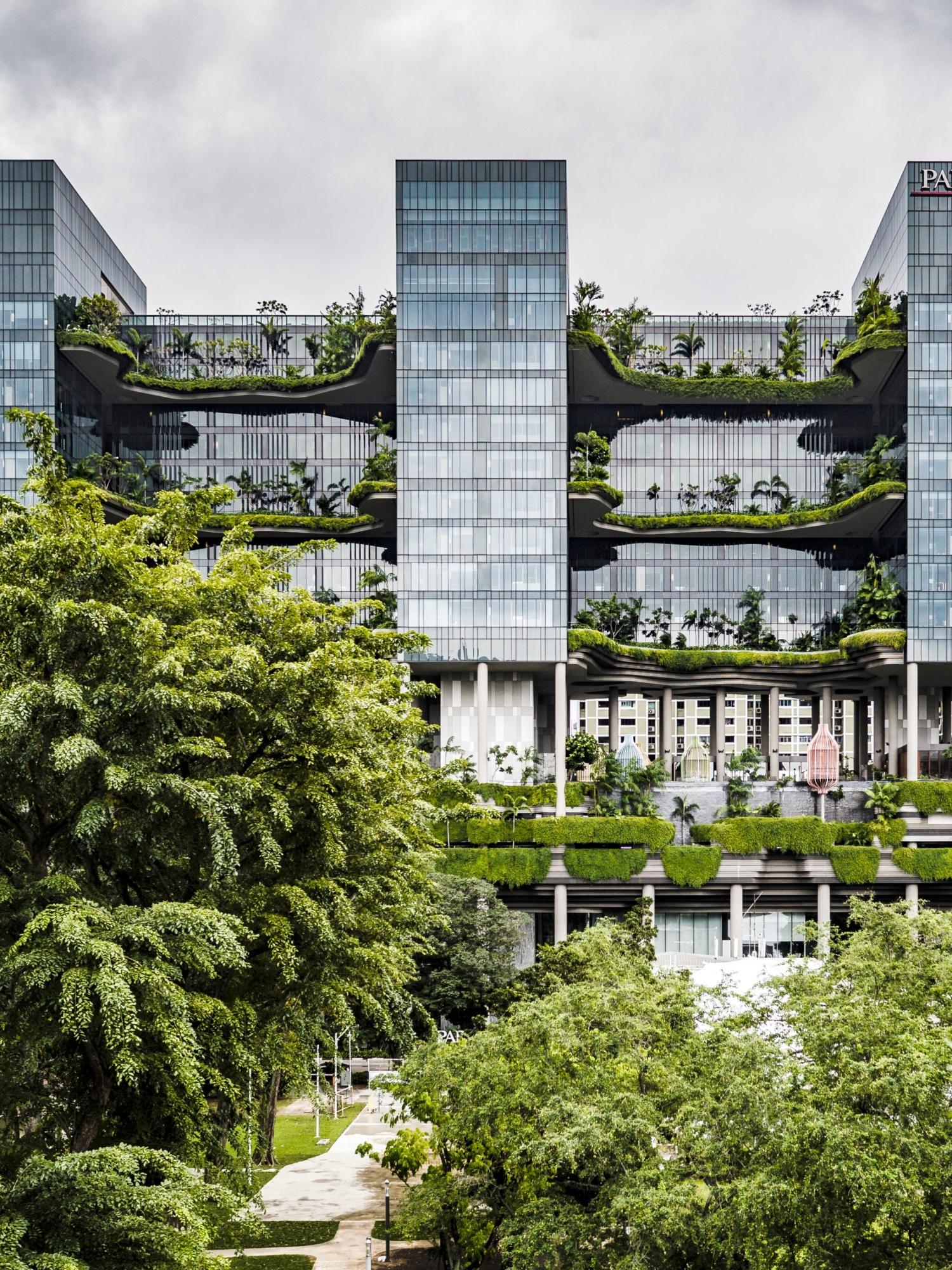 Jardín. Edificios sostenibles.